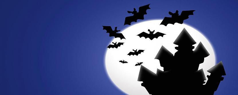 SikspārņiSikspārņi ir... Autors: Kinkažu Helovīna simboli un to nozīme