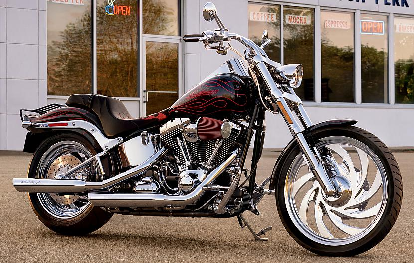 Softail Custom Autors: Fosilija Harley - Davidson, 2009
