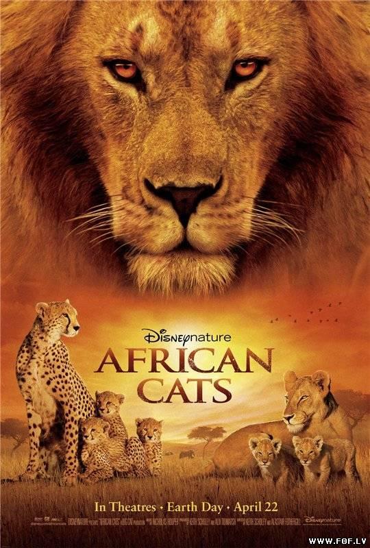 Āfrikas KaķiAfrican Cats Autors: XxlordoftheringsxX 10 Filmas Kuras Noteikti Jāredz 2013.gadā