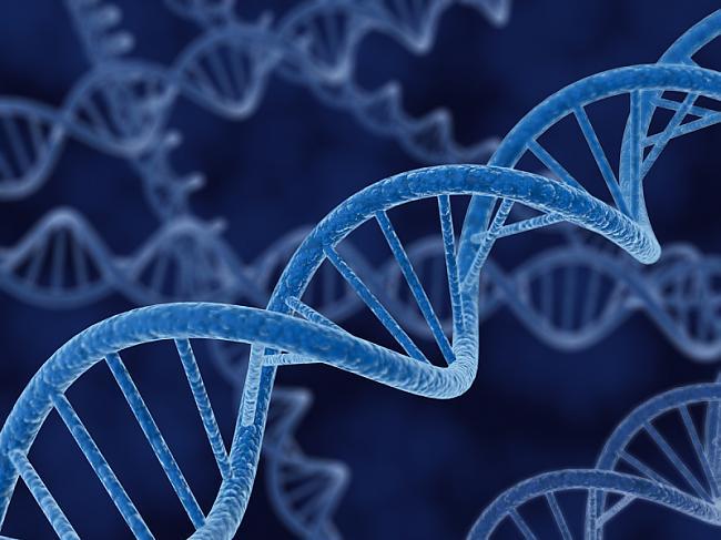 Ļaujies gēnu terapijainbspLai... Autors: zlovegood Jaunas metodes, kā pagarināt dzīves ilgumu