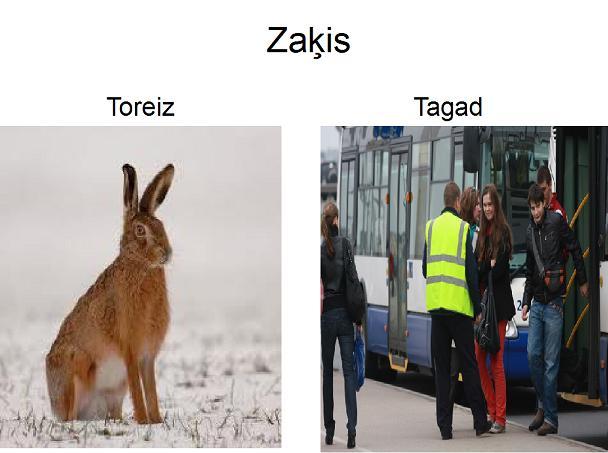 Autors: xprusaks Perfekta diena vs Kombuļu Inese :)