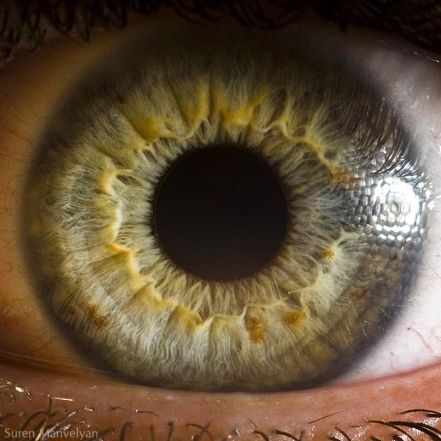 Autors: monta kalmane@speles Amazing Macro Photos Of Human Eyes