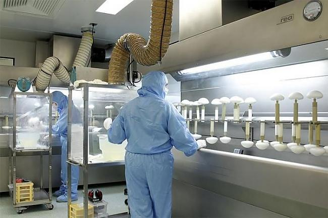 Autors: janex1 Silikona krūšu implantu ražošana
