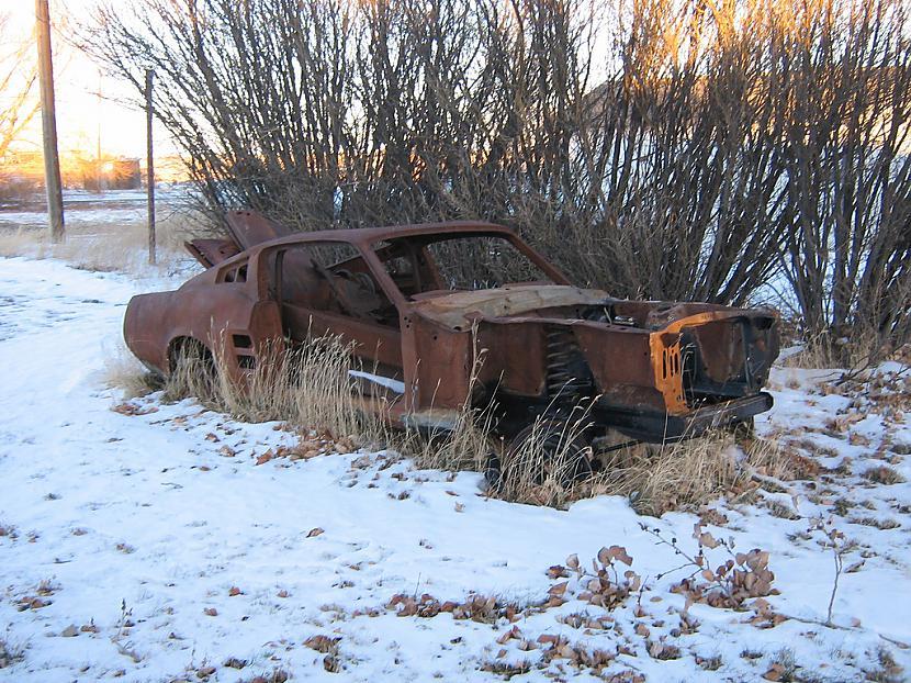 Ford Mustang ir viens no... Autors: Fosilija Mašīnu lielākais ienaidnieks