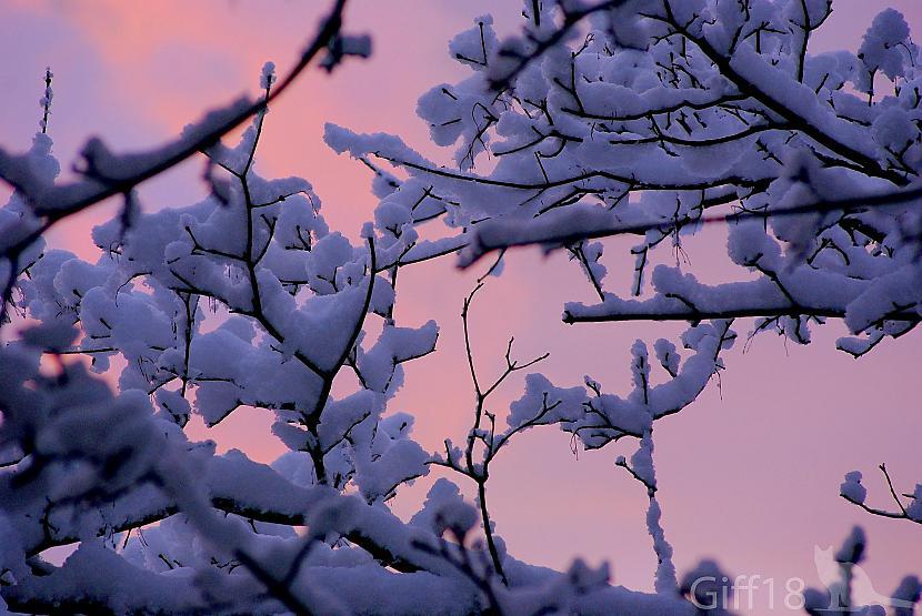 Autors: Giff18 Reiz kādā agrā rītā ^^