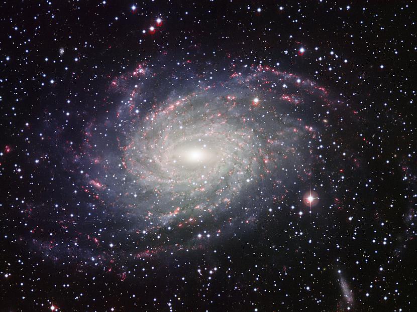 Scaronādi darotmēs ne tikai... Autors: Pasaules iedzīvotājs Kosmosā ir dzīvība!