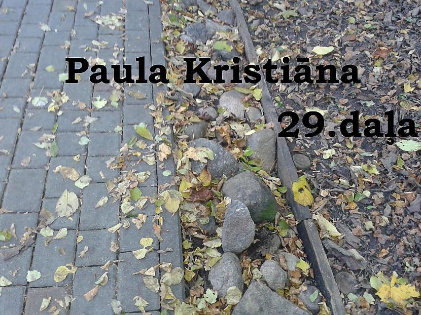 Autors: Zanduchii Paula Kristiāna (29)