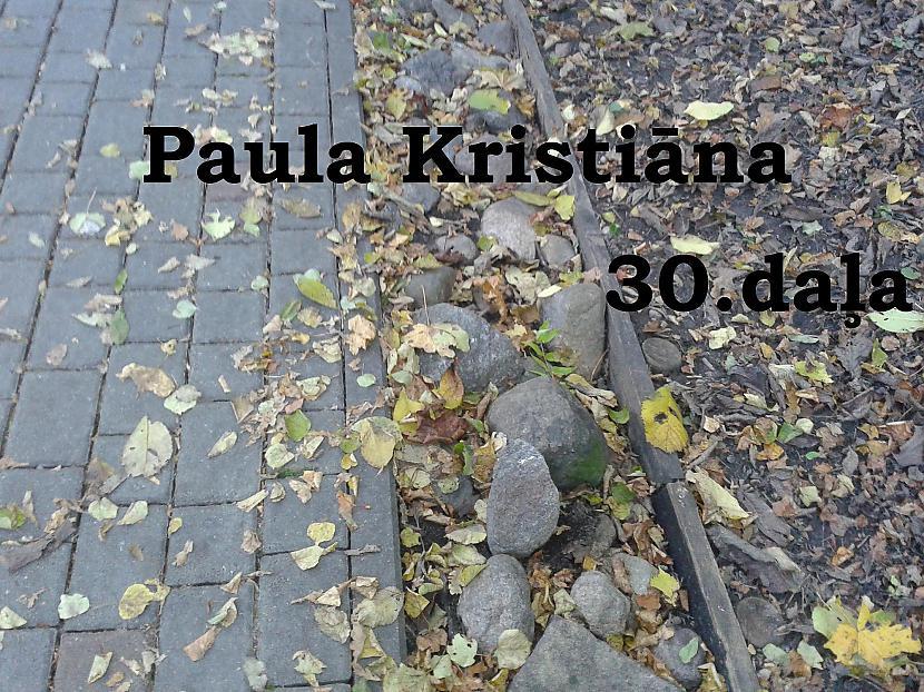 Autors: Zanduchii Paula Kristiāna (30)