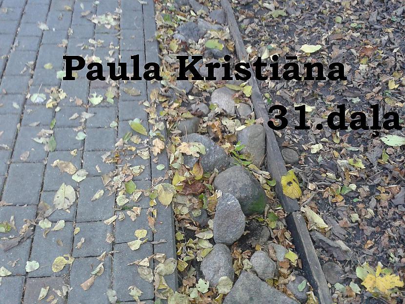 Autors: Zanduchii Paula Kristiāna (31)
