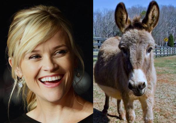 Reese Witherspoon ar savu... Autors: GanjaGod Slavenības ar saviem eksotiskajiem dzīvniekiem