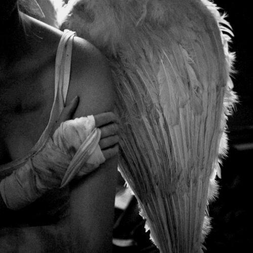Autors: Minons Eņģelis bez spārniem...