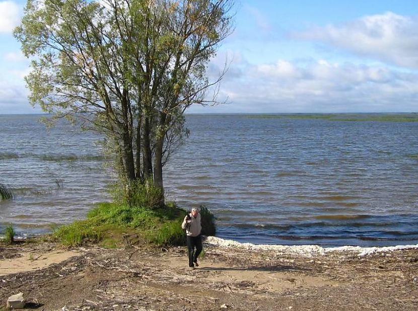1 Lielākais ezers... Autors: kriska14 Fakti par Latvijas ezeriem!