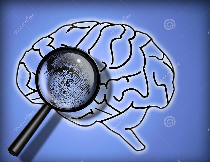 Tāpat kā pirkstu nospiedumi... Autors: Aurelius Kā rodas «bezfilma» un citi fakti par smadzenēm