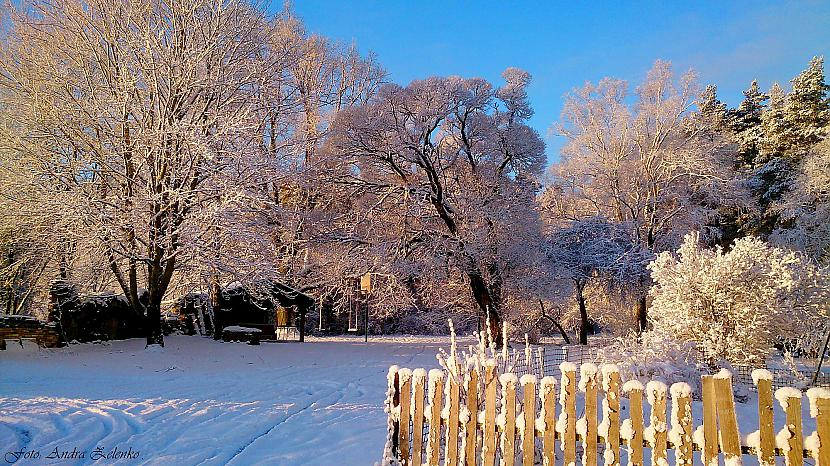 Autors: Dzērvenīte7 Mani ziemas skati