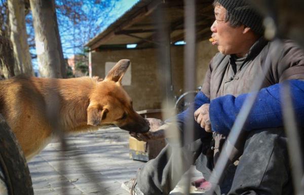 Manao dzīvē gadās dienas kad... Autors: kaķūns Lielā Dzeltenā - suns ar lielu sirdi