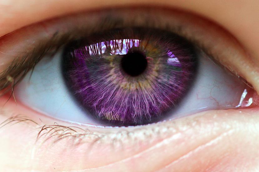 Sarkanas rozā un violetas... Autors: Tourist Unikālās acis