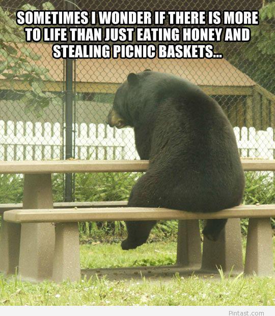 Autors: Neglītene Dzīvnieciņi
