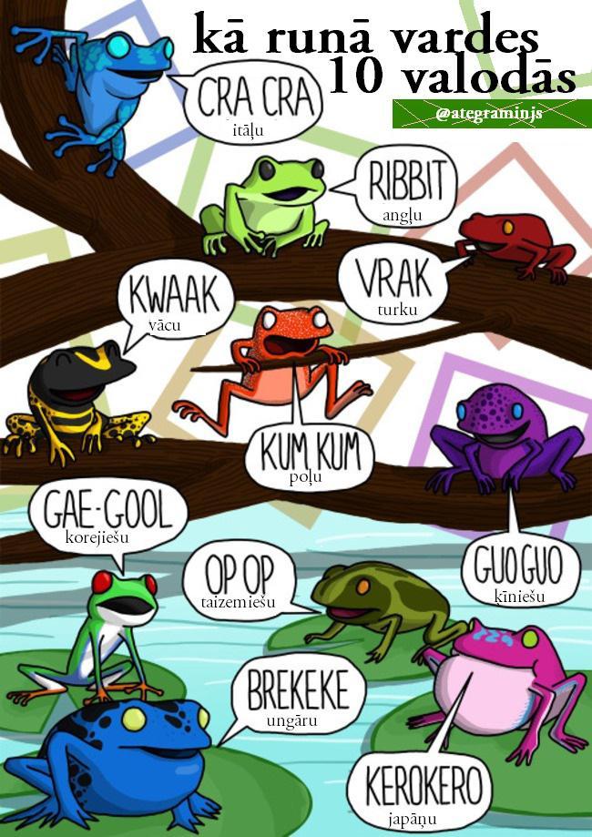 Autors: kaķūns Kā dzīvnieki runā dažādās valodās