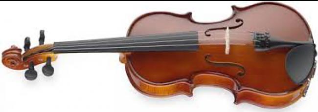 Vijole ir veidota no aptuveni... Autors: mirdzumiņa2 Faktiņi