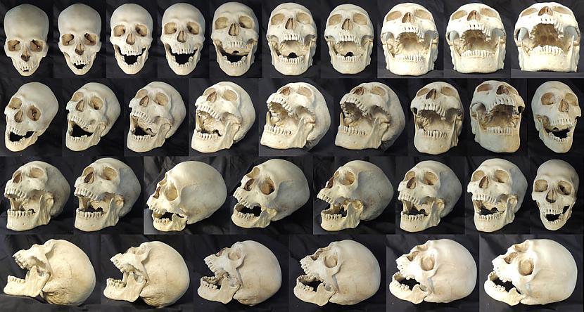 Kopscaron cilvēces... Autors: Trakais Jēgers Izglītojošas lietas par NĀVI