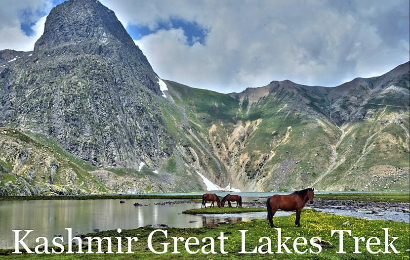 Autors: TripNThrill Undertake an Adventurous Trek in Himalayas