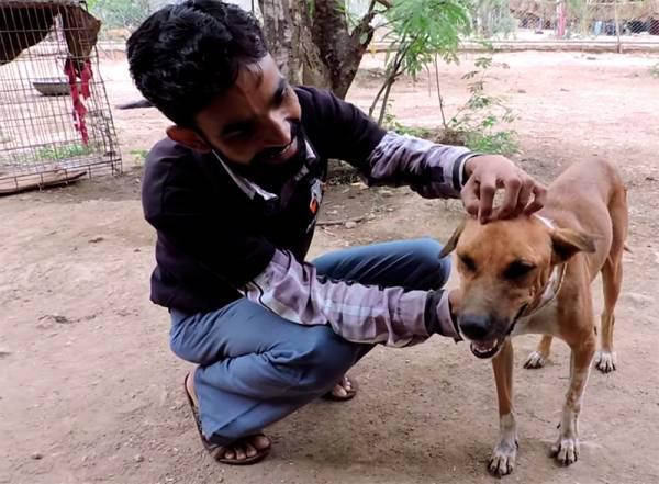 Protams ir arī jāsaka liels... Autors: 3L3KTR1C0 Neticams stāsts par klaiņojošo suni, kuram bija briesmīga nieze