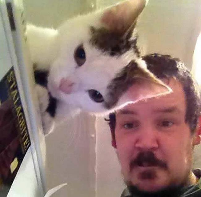Caurspīdīgs kaķis PS es ilgi... Autors: SākuDzīvi NoJauna Bildes pareizajā mirklī, lai uz tām paskatītos divreiz.