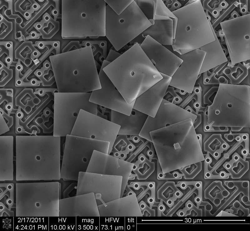 Nano spoguļi kas uzstādīti DLP... Autors: droop Attēli ar elektronmikroskopu