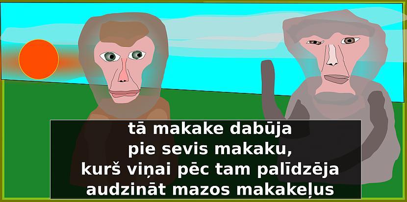 Autors: Strāvonis Makaks un makaka