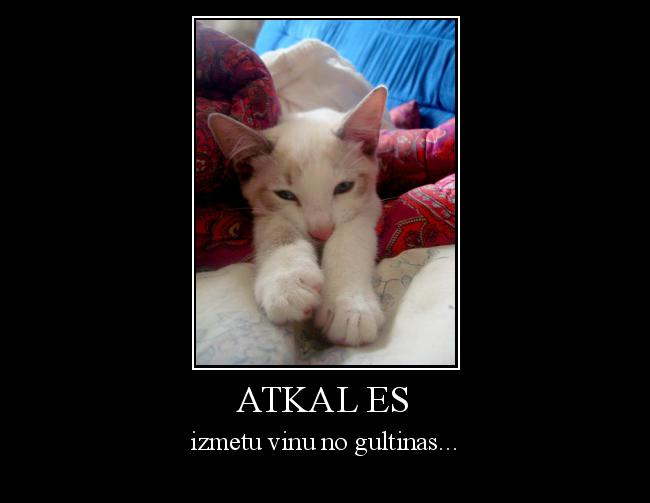 Autors: Altenzo ATkal Es