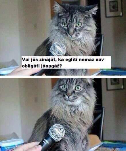 Autors: Fosilija Funny #3