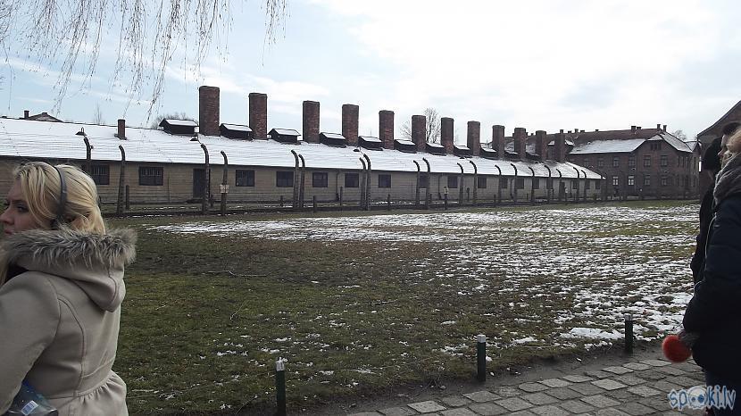 Scaroneit bildē ir redzama... Autors: Fosilija Es tur biju, es to redzēju - Aušvices koncentrācijas nometne Birkenau #1