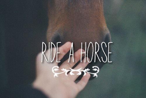 Autors: Fosilija Jātniekiem un zirgu mīļotājiem!