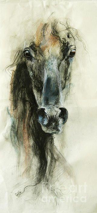 Autors: Fosilija Zirgu mīļotājiem!
