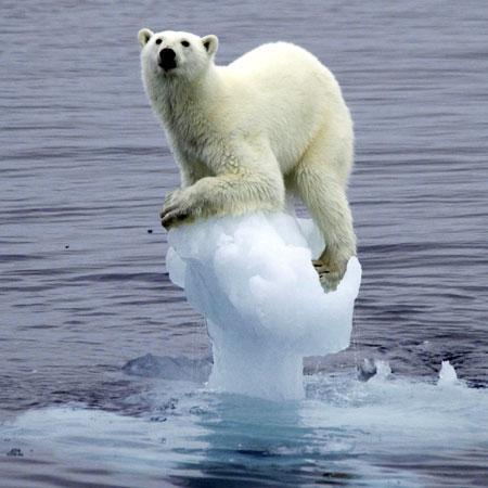 1 Globālā sasilscaronanaTas... Autors: Dainixx3 5 bildes, kuras pierāda, ka cilvēces gals ir tuvu