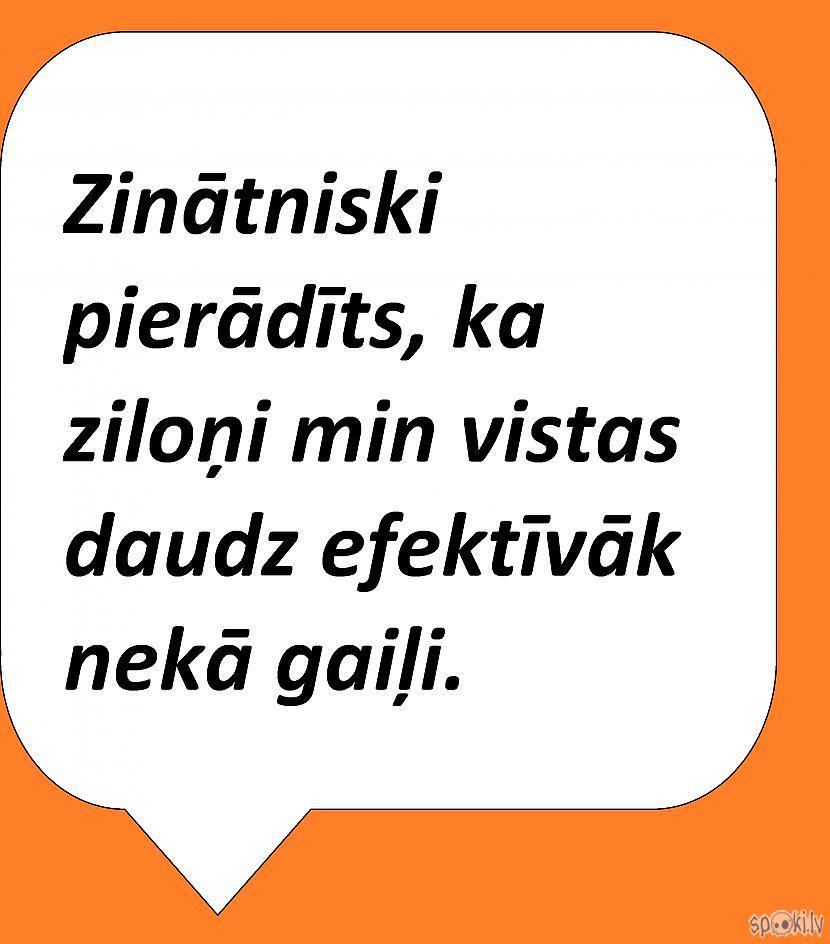 Autors: Latvian Revenger Spokijoko