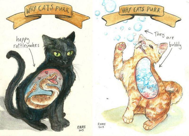 Murrāscaronana palielina kaulu... Autors: Lestets Kāpēc kaķi murrā?