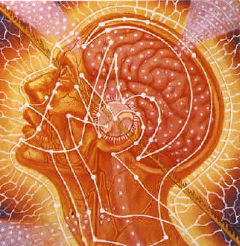 3PRĀTA NEVIS ĶERMEŅA... Autors: vienanominkam 9 elpu aizraujoši fakti par jogu