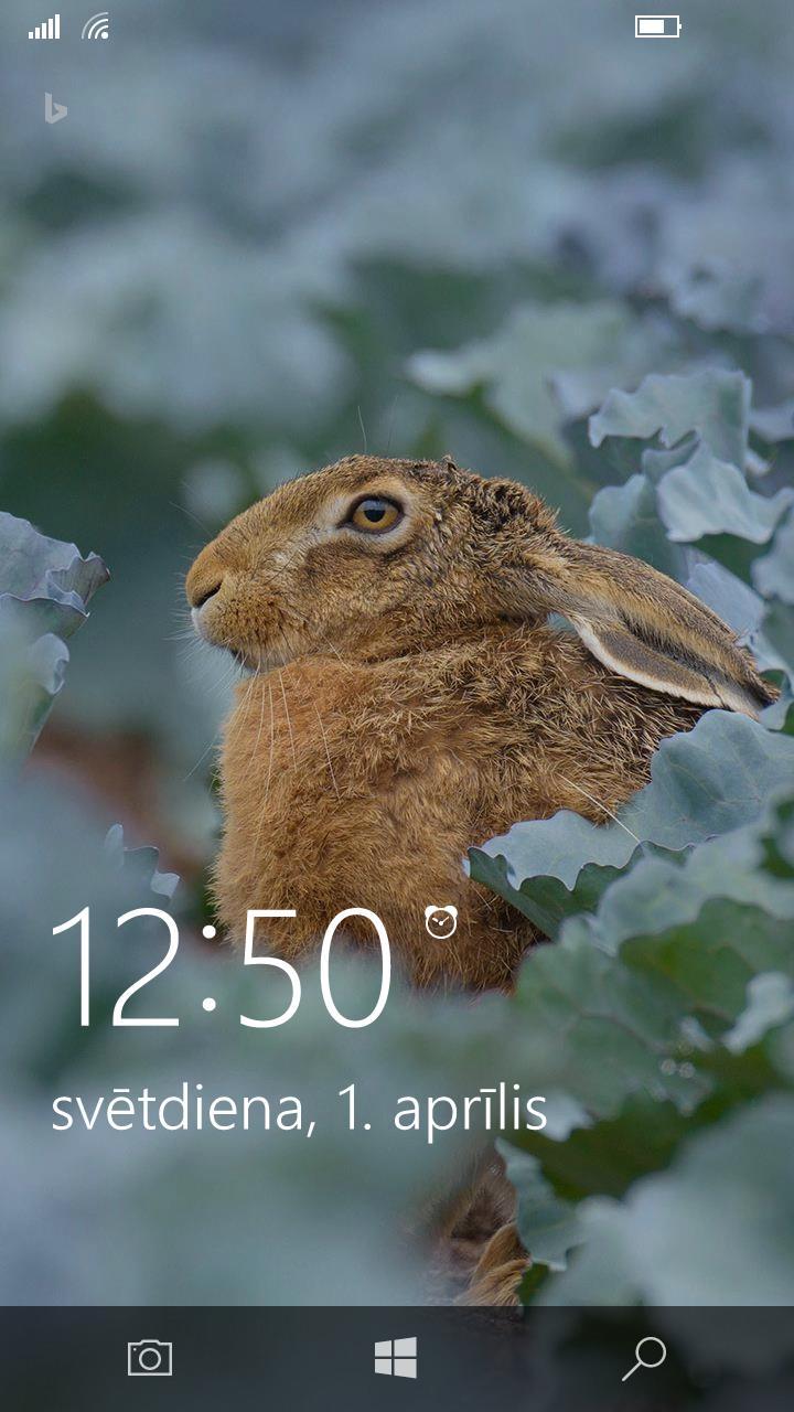 mans pulkstenis XD Autors: Agutiņš Skaistas bildes (Foniem)