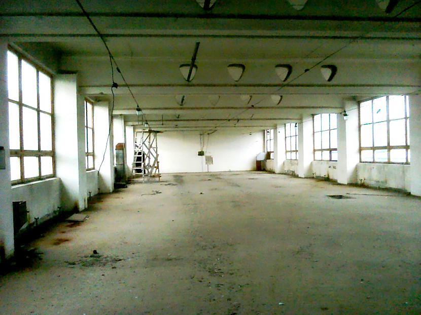 040817Scaronādas zāles te ir... Autors: default24 SRAU Bundžiņcehs (08.07.16) + AUDIO