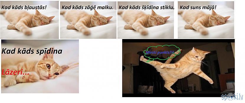 Autors: Fosilija Komiksi ar kaķiem!