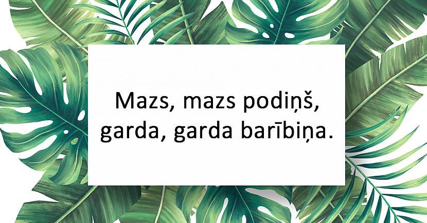 nbspAtbilde Medus scaronūnas Autors: matilde 20 interesantas latviešu tautas mīklas