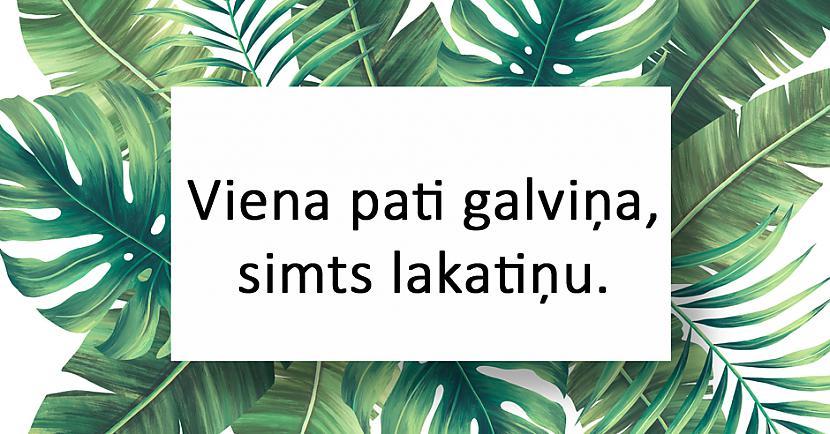 nbspAtbildenbspKāpostgalva Autors: matilde 20 interesantas latviešu tautas mīklas