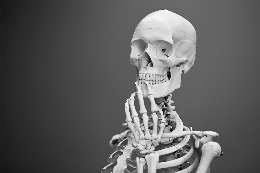 Cilvēks var dzīvot bez... Autors: Lestets 16 cilvēka ķermeņa īpatnības, par kurām pat mediķi var nezināt
