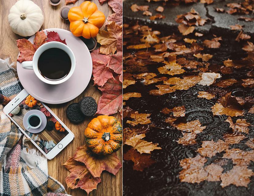 Autors: The Diāna Atvērtais raksts - Parādi rudens skaistumu!