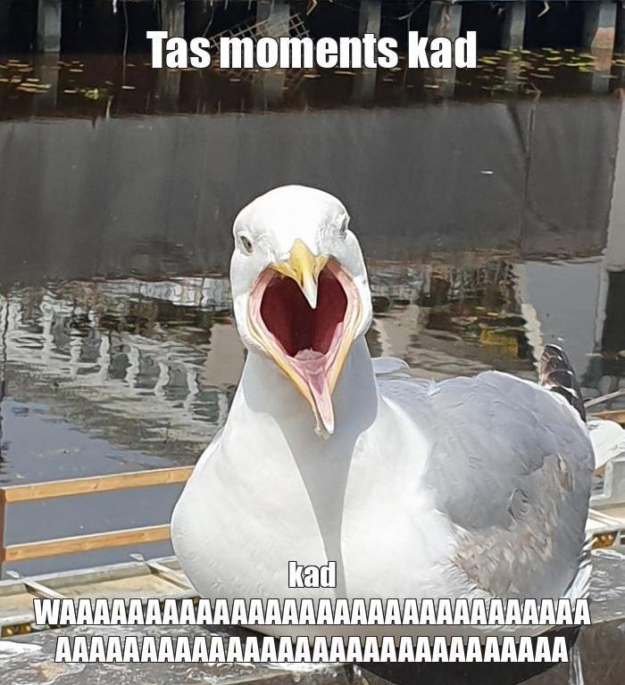 Autors: JurisDraugs Memes