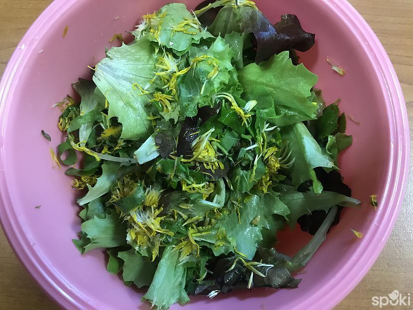 Darbā eZZiiC salātu miksli... Autors: ezkins Ar plūmi pa aknu!